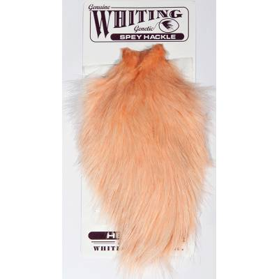 Whiting Speyhackle Hen Cape